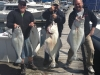 Halibut Fishing Charter in Port Renfrew