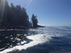 Fishing Charter in Port Renfrew